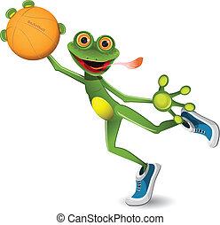 basket-ball, grenouille