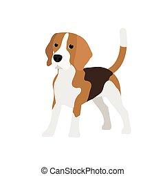 beagle, vecteur, chien