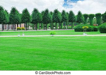 beau, été, avenues, pelouses, jardin