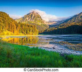 beau, été, obersee, coloré, lac, matin, suisse, incredibly