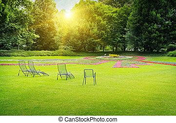 beau, été, parc
