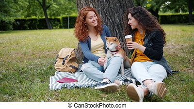 beau, été, pelouse, séance, parc, chien, conversation, soeurs, apprécier, caresser