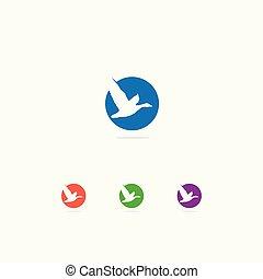 beau, amour, coloré, paix, symbole., pélican, canard, logo, icon., oiseau, design.