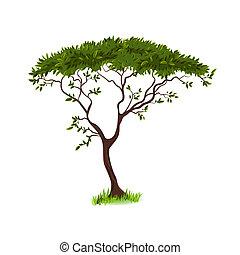 beau, arbre, conception, ton