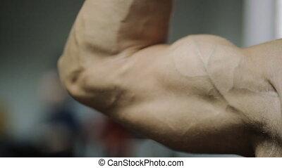 beau, athlète, conduite, sans, développé, muscles., quand, graisse, main, bras, muscles, adulte transmet, mâle, puits, mouvement