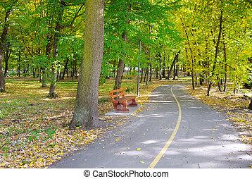 beau, automne, parc, paysage