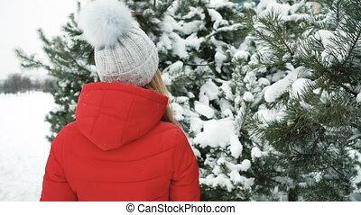 beau, conifère, femme, neige, arbres, promenades, couvert, gaiement