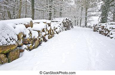 beau, coupure, empilé, hiver, neige, profond, scène, vierge, forêt, frais, sentier, côtés, bois construction