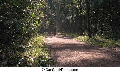 beau, courses, matin, tôt, parc, par, sunlight., homme