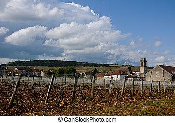 beau, de, france, produit, vignobles, cote, beaune, où, vin
