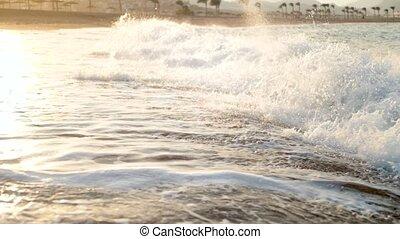 beau, doré, lent, métrage, mouvement, coucher soleil, mer, vagues, plage, sur