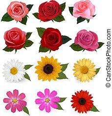 beau, ensemble, illustration., coloré, grand, flowers., vecteur