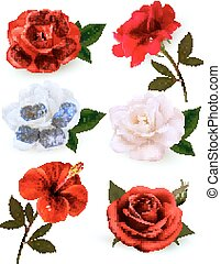 beau, ensemble, isolé, arrière-plan., vector., fleurs blanches