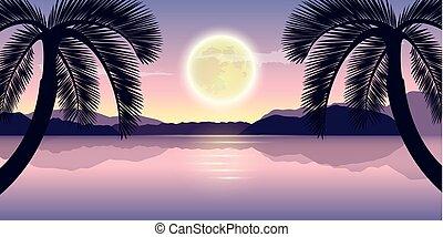 beau, entiers, pourpre, lac, arbres, lune, nuit paume, vacances, paysage