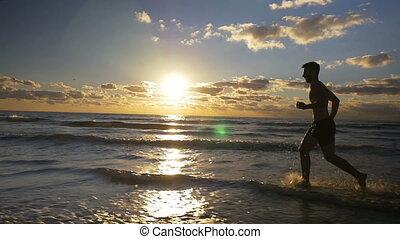beau, lent, coureur, séance entraînement, mouvement, plage, levers de soleil