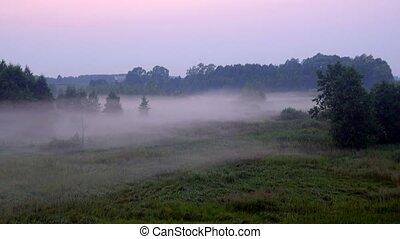 beau, linceuls, terre, crépuscule, brouillard