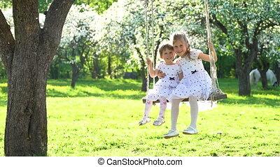beau, mignon, bois, printemps, balançoire, filles, deux, oscillation, temps, soeurs, parc