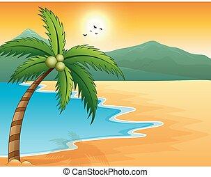 beau, montagne, bord mer, paysage marin coucher soleil