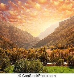 beau, montagne, sky., contre, forêt, paysage