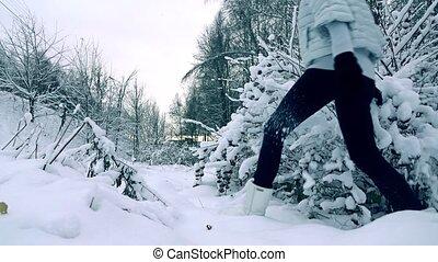 beau, mouvement, marche, femme, hiver, neigeux, coup, gris, svelte, jeune, veste, couleurs, lent, forêt, froid