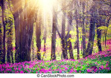 beau, nature, arbres., fleurir, parc, herbe, vert, printemps, fleurs sauvages, paysage