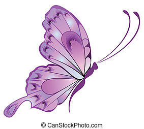 beau, papillon