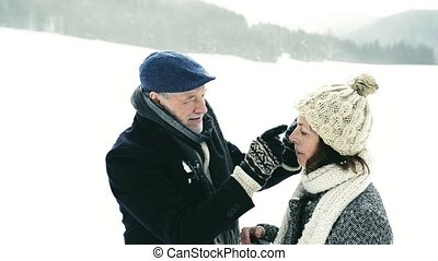 beau, personne agee, nature., couple, hiver
