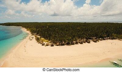 beau, philippines, aérien, île, daco, exotique, island., plage, siargao., vue