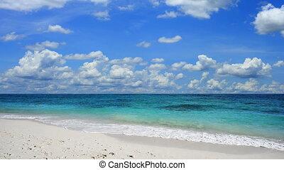 beau, plage tropicale, scène