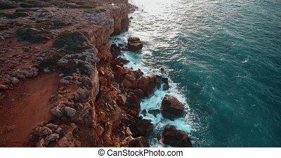 beau, rivage, voler, au-dessus, mer