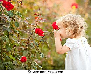 beau, rose, enfant, sentir