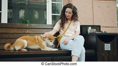 beau, shiba, étudiant, séance, inu, chien, banc, caresser, femme, café, ville