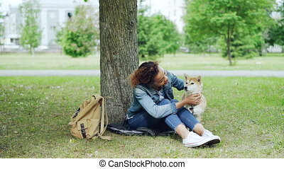 beau, shiba, espèce, african-american, inu, caresser, séance, parc, chien, arbre, visible, arrière-plan., sous, girl, herbe, ville, paysage