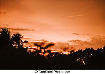 beau, tropiques, plage, coucher soleil, recours