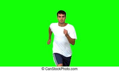 beau, vert, écran, jogging, homme