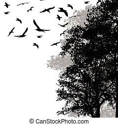 beau, voler, forêt, arbres, oiseaux