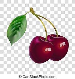 beauty., botanique, fruit., santé