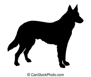 berger, silhouette, chien, noir