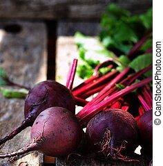 betterave, organique, frais, racine