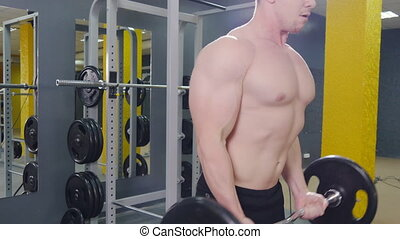 biceps, fonctionnement, gymnase, musculaire, barre disques, exercices, dehors, homme