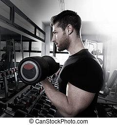 biceps, séance entraînement, fitness, haltère, gymnase, homme