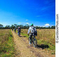 bicycles, équitation, cyclistes, pré