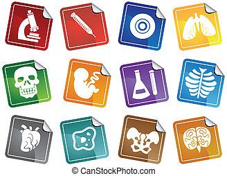biologie, icône, autocollant, ensemble