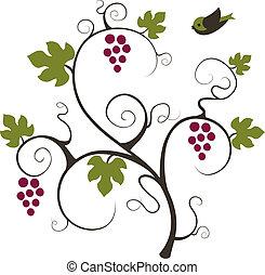 bird., vigne
