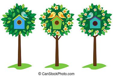 birdhouses, arbres