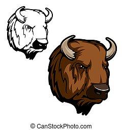 bison, sauvage, tête, animal, taureau, ou, bœuf, buffle