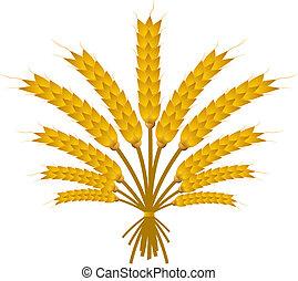 blé, paquet