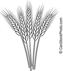 blé, vecteur, noir, blanc, oreilles, tas