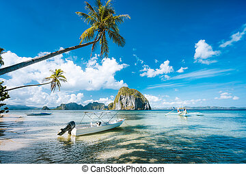 blanc, arbre, nuages, jetée, exotique, bleu, exotique, paume, ciel, marine, bateaux, jetée