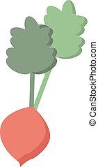 blanc, arrière-plan., carotte, vecteur, illustration